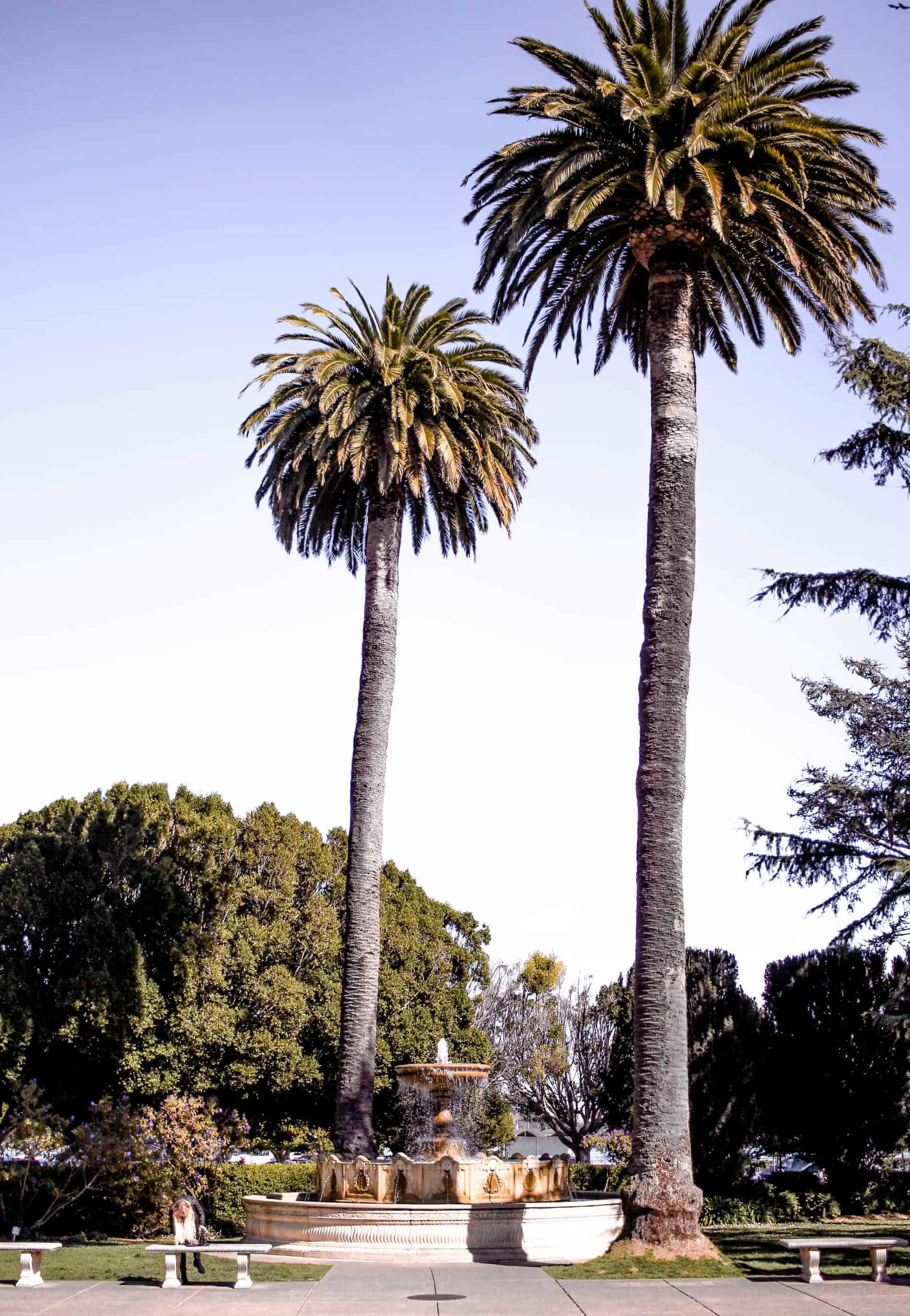 sausalito california
