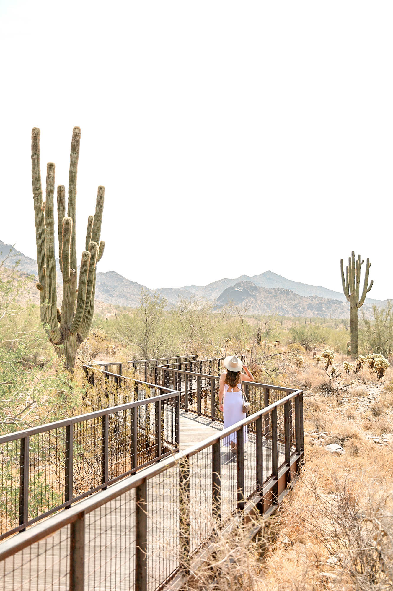 A Weekend Guide to Scottsdale, Arizona