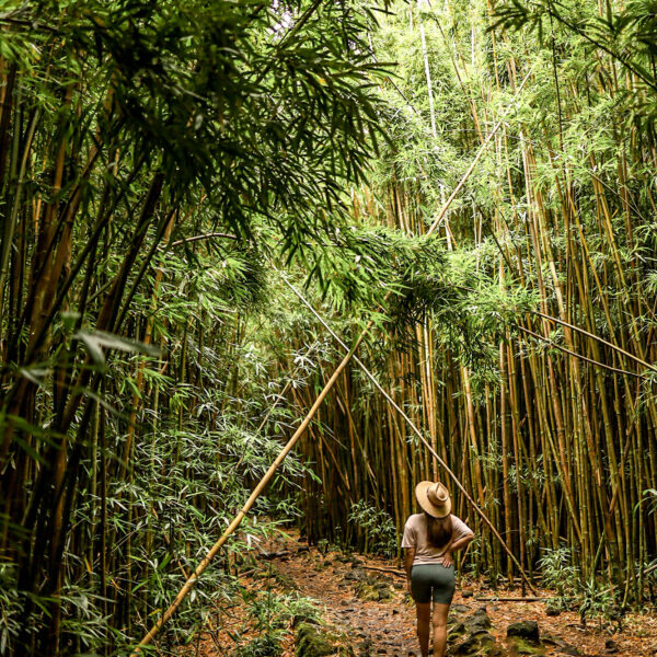A First Timer's Guide to The Road to Hana in Maui, Hawaii