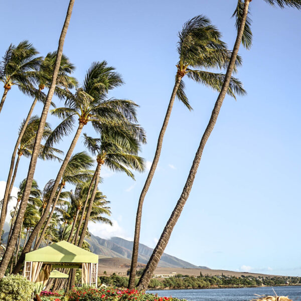 My Experience Traveling to Hawaii during Covid