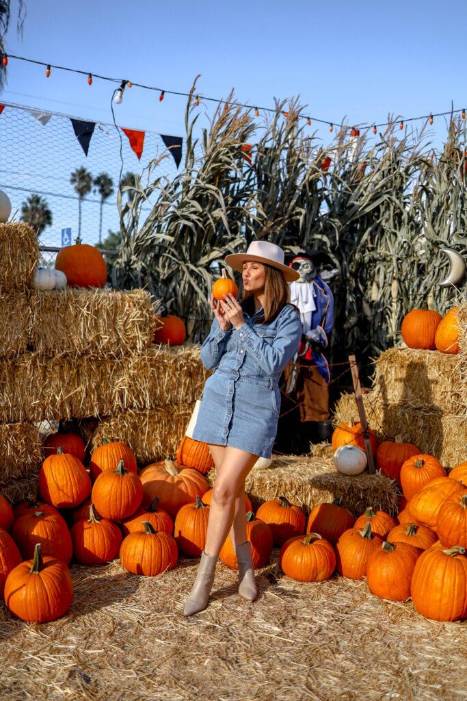 girl kissing pumpkin in PB Pumpkin Patch
