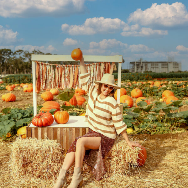 14 Best Pumpkin Patch in San Diego + Best Fall Activities