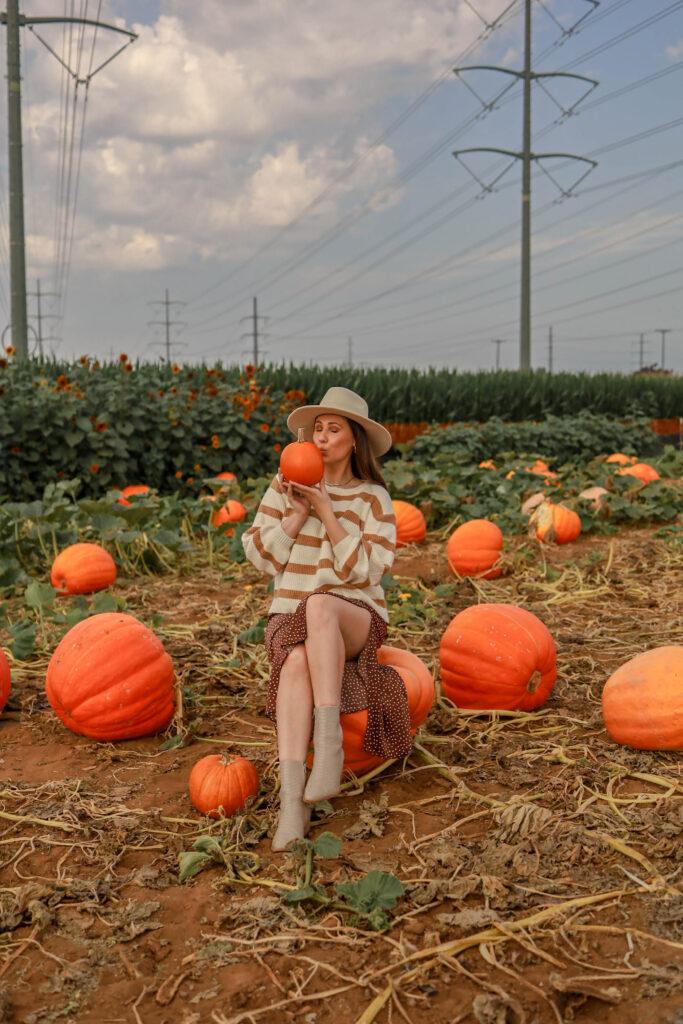 girl holding pumpkins at the carlsbad strawberry company
